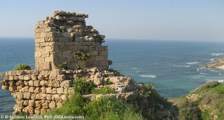 Ruins from the Crusader fortress of Apollonia overlooking the Mediterranean Sea from atop the Calcarenite (kurkar) cliffs of central Israel. Source: D Gershon Lewental (DGLnotes).